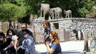 Kocaeli'ndeki hayvanat bahçesi kapılarını yeniden ziyarete açtı