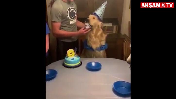 Doğum Günü Partime Tüm Arkadaşlarımı Davet Ettim