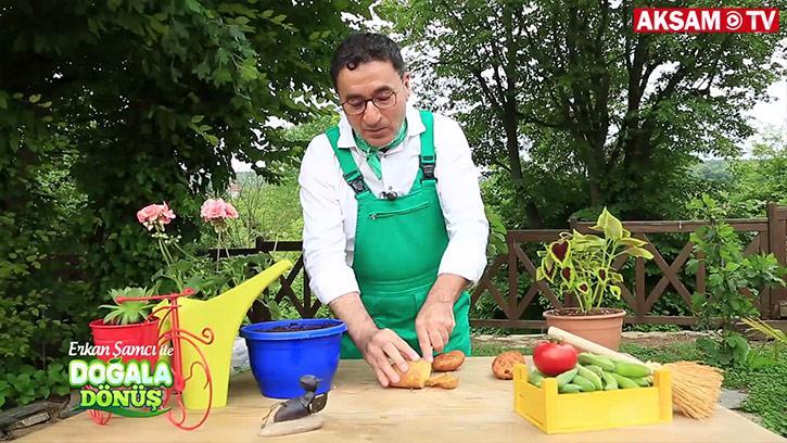 Saksıda patates nasıl yetiştirilir?