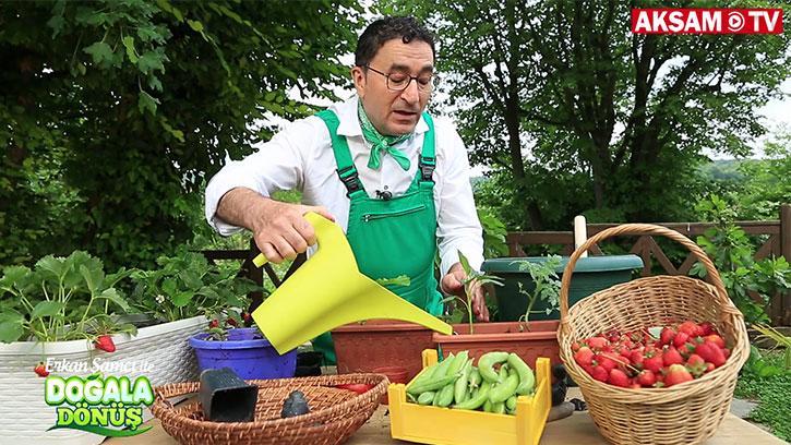Evde tarım mümkün mü?
