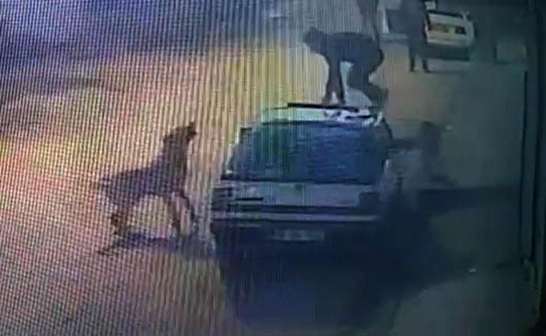Sokak köpeklerinin saldırısından park halindeki aracın üzerine çıkarak kurtuldu
