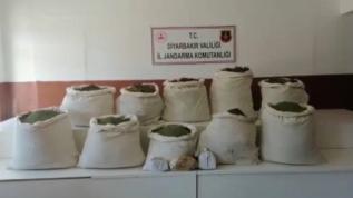 Diyarbakır'da ele geçirilen 2 milyon 452 bin 500 kök Hint keneviri imha edildi