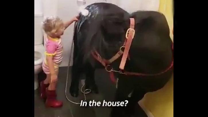 Minik Kız, Tayı Evlerinin Banyosunda Böyle Yıkadı
