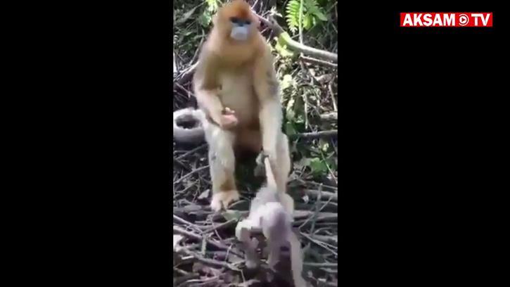 Anne Her Yerde Annedir :)