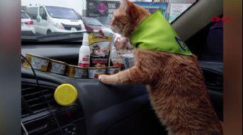 İşte Ukrayna'nın En Popüler Taksisi