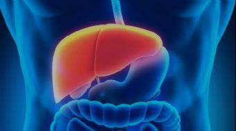 Kimler Karaciğer Nakli İçin Donör Olabilir? | Doç. Dr. Alpaslan Tanoğlu