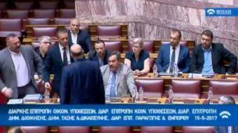 Yunan Parlamentosu, Yeni Demokrasi Partisi Sözcüsü Nikos Dendias'ın, Faşist Altın Safak Partisi Mill