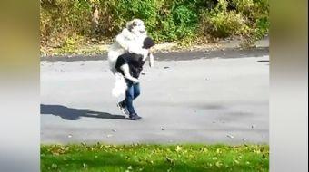 Yorulan Köpeğini Sırtında Taşıdı