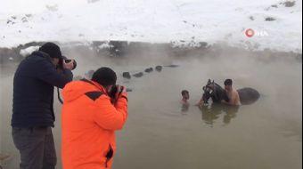 Mandaların Kaplıca Keyfine Fotoğrafçılardan Yoğun İlgi