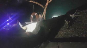 Kasımpaşa Taşkızak Tersanesi'nde çalışan bir işçi dengesini kaybetmesi sonucu denize düştü. Adeta ca
