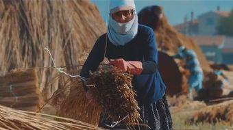 TRT'den yeni belgesel: Usta Eller Masalı