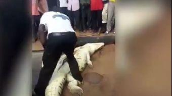 Zimbabve'de kaybolan sekiz yaşındaki çocuk timsahın karnından çıktı. Kaybolan çocuğu arayan yerliler