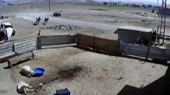 Kayseri'nin Sarıoğlan ilçesinde, tümsekte zıplayan at arabasında hava savrulup arabanın içine düşen
