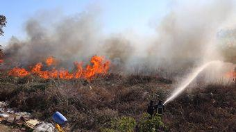 Sazlık Alanda Yangın... Bazı Evler Tahliye Edildi!