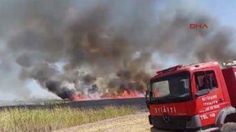 Ankara'nın Gölbaşı İlçesinde bulunan Mogan Gölü kenarındaki sazlık alanda yangın çıktı.