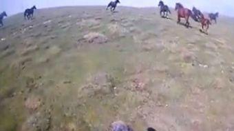Dağda motoruyla ilerleyen bir motokrosçu, önüne çıkan yılkı atlarıyla adeta yarıştı. Motokrosçunun b