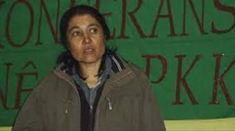 Terör örgütü PKK yöneticisi Evindar Ararat verdiği röportajda 16 Nisan'da yapılacak referandum için