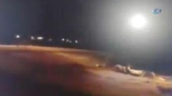 Erzurum'un Yakutiye ilçesine bağlı Köse Mehmet Mahallesi'nde kurt sürüsünün köpeğe saldırarak telef