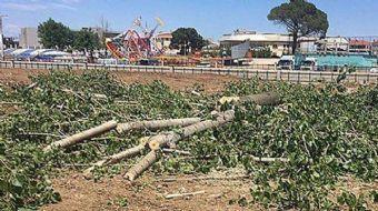 Çanakkale'nin Biga ilçesinde CHP'li Belediye, şehrin hemen içinden akan Kocabaş çayı kenarındaki kav