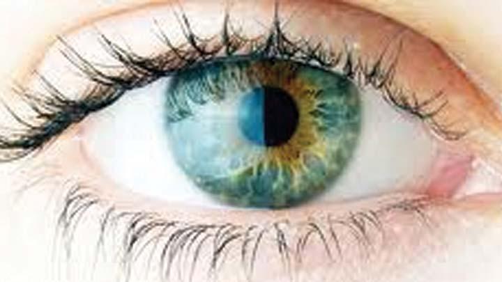 'Kök'ten retina ışığı