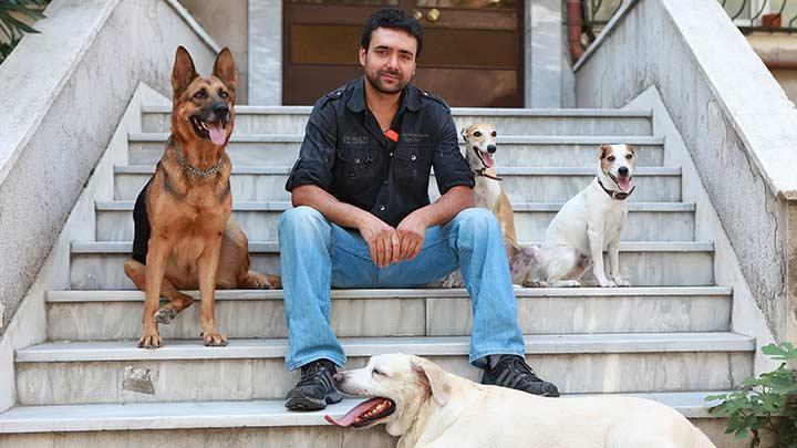 Köpeklere fısıldayan Modalı