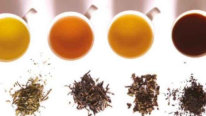 lipton slim plus çayı zayıflatırmı