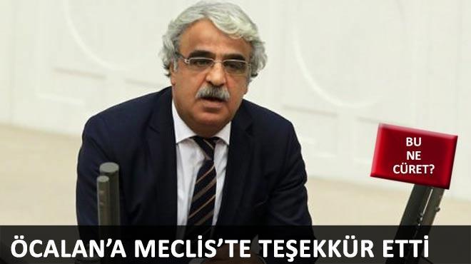 HDP'li vekil TBMM'de �calan'a te�ekk�r etti