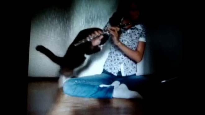 M�zikten ho�lanmayan kedi sahibine sald�rd�