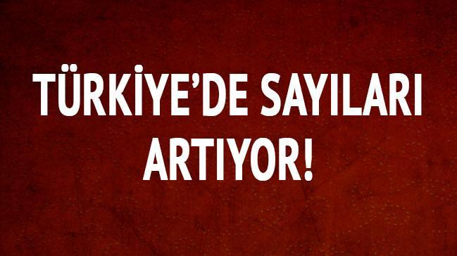 T�rkiye'de say�lar� art�yor