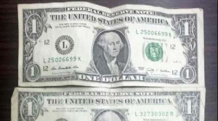 19 FET�'c� akademisyenin �zerinden �1 dolar� ��kt�
