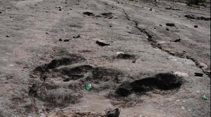 Bolivya'da bir dinozorun ayak izi bulundu