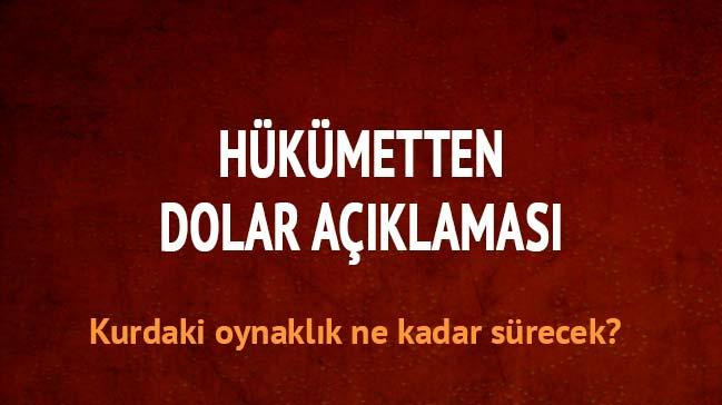 Hükümetten kritik dolar açıklaması!