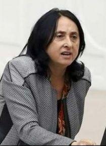 HDP'li vekil Nursel Aydoğan'a 103 yıl hapis istemi