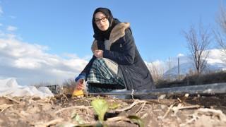 Erzincan'da bir öğrenci, bitkileri donmaya karşı koruyan solüsyon yaptı