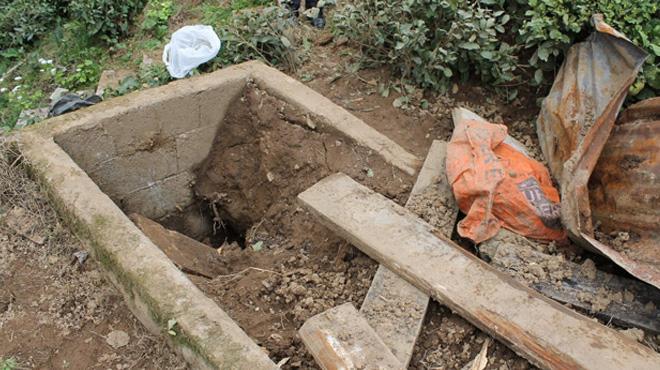 Kış uykusundan uyanan ayılar mezarlara dadandı