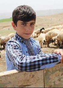 Çobanlık yapan TEOG 2.si Habib: Nasırlarımla gurur duyuyorum