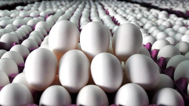 Yumurta fiyatları dibe vurdu!