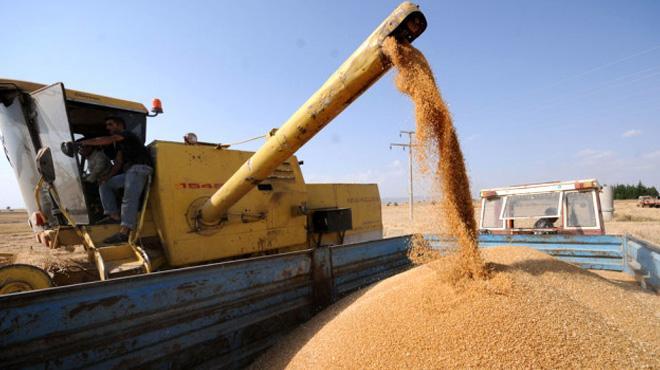 TMO'dan 415 bin ton ürün alımı