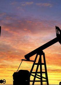Hindistan'da petrol hırsızlığı çetesine  yönelik operasyonda 25 kişi gözaltına alındı