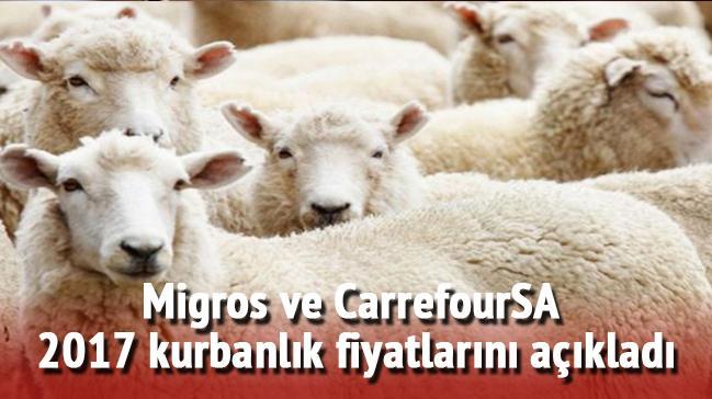 2017+CarrefourSA+ve+Migros+kurbanl%C4%B1k+fiyatlar%C4%B1n%C4%B1+yay%C4%B1nlad%C4%B1