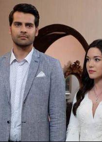 TRT'nin iddialı dizisi Star TV'ye transfer oldu!