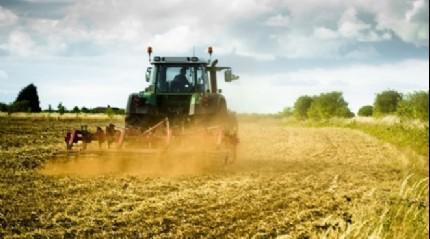 Tarımsal desteklerin artışı çiftçileri sevindirdi