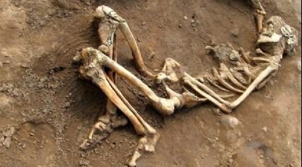 8 yıl önce iskeleti bulunan kişinin kimliği belirlendi