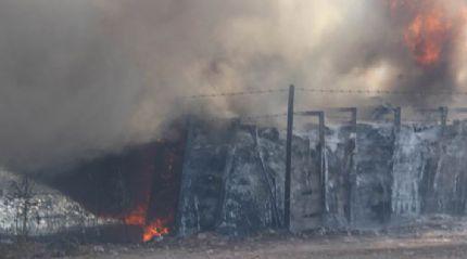 Sivas'ta ot yangını paniğe sebep oldu