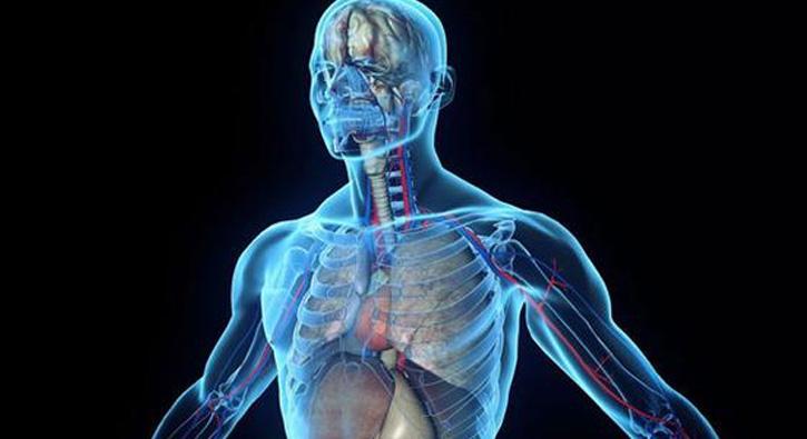 ABD Gıda ve İlaç İdaresi FDA insan vücudunda dijital olarak
