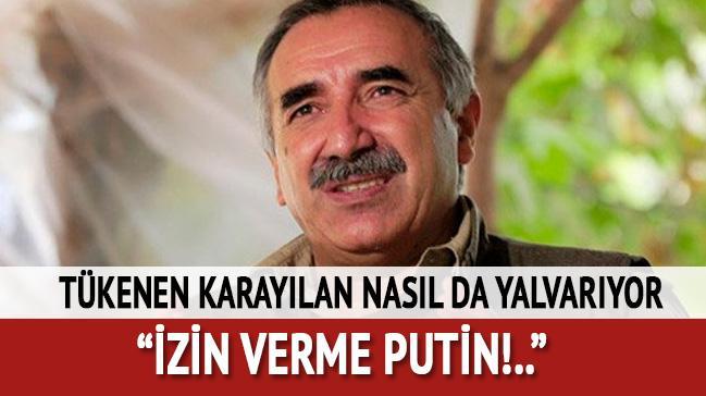 PKK elebaşlarından Karayılan Rusya'ya böyle yalvardı: İzin verme Putin!