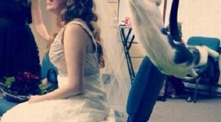 Unutulmaz düğün fotoğrafları