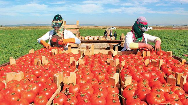 VakıfBank 'TarımKart'la Simdi al, hasatta öde