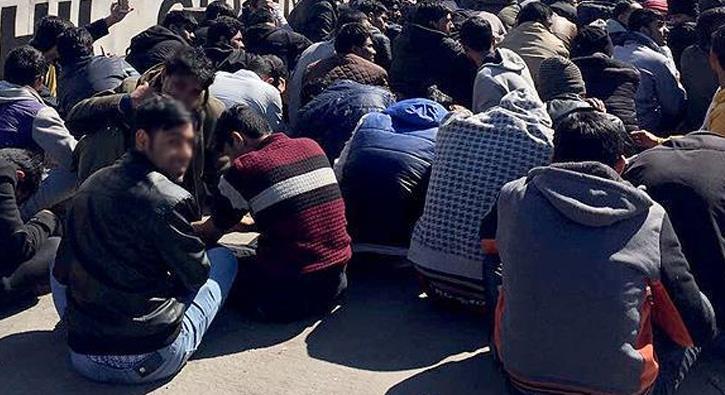 Muğla'da 23 kaçak göçmen yakalandı