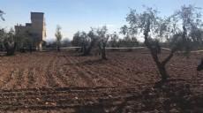 Kilis'te köyde bir evin bahçesine roket düştü